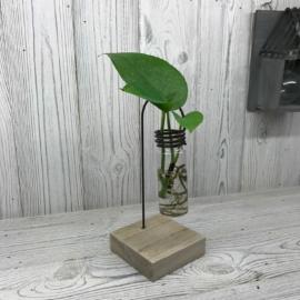 különleges dekor üvegkaspó