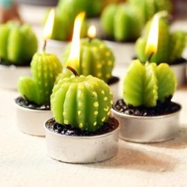 Kaktusz gyertya, 6 db-os dekorgyertya szett