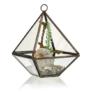 Kép 1/3 - kicsi, gyémánt alakú florárium