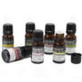 Kép 2/2 - Eukaliptusz illóolaj - 10 ml