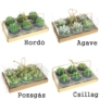 Kép 4/7 - választható kaktusz gyertya típusok